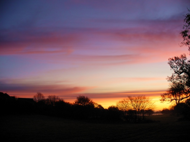 late November dawn, Hertfordshire