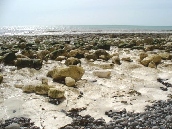 the chalk shore at Birling Gap