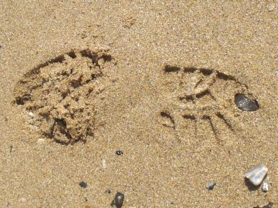 light footprint in sand