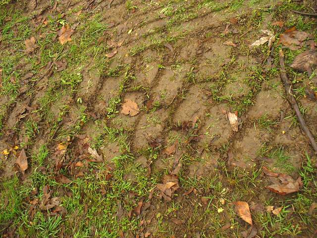 ruts left by heavy machinery